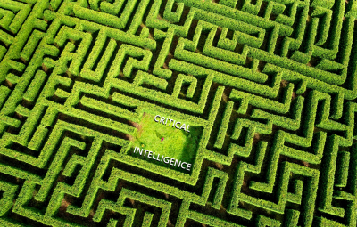 A Path To Critical Intelligence Through The Maze Of Human Problems